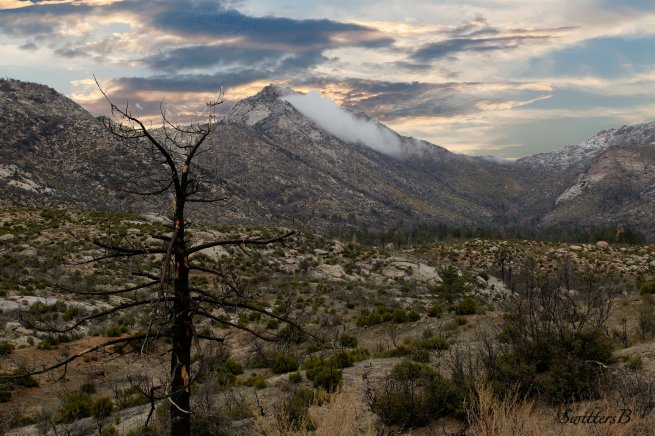apple-canyon-california-swittersb
