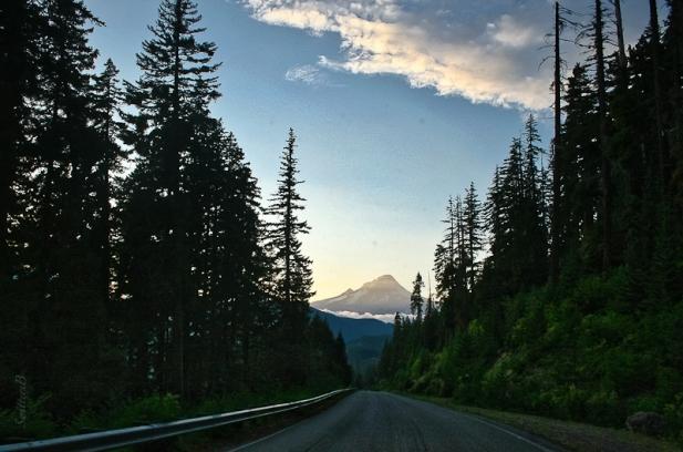 mt-hood-oregon-barlow-road-swittersb