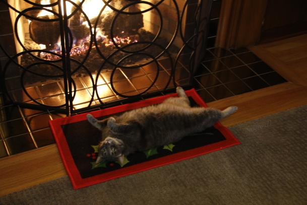 penny-the-cat-fireplace-swittersb