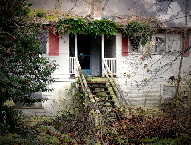old-house-sauvie-island-abandoned-swittersb