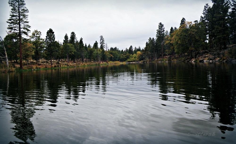 Forms of solitude swittersb exploring for Fish lake oregon