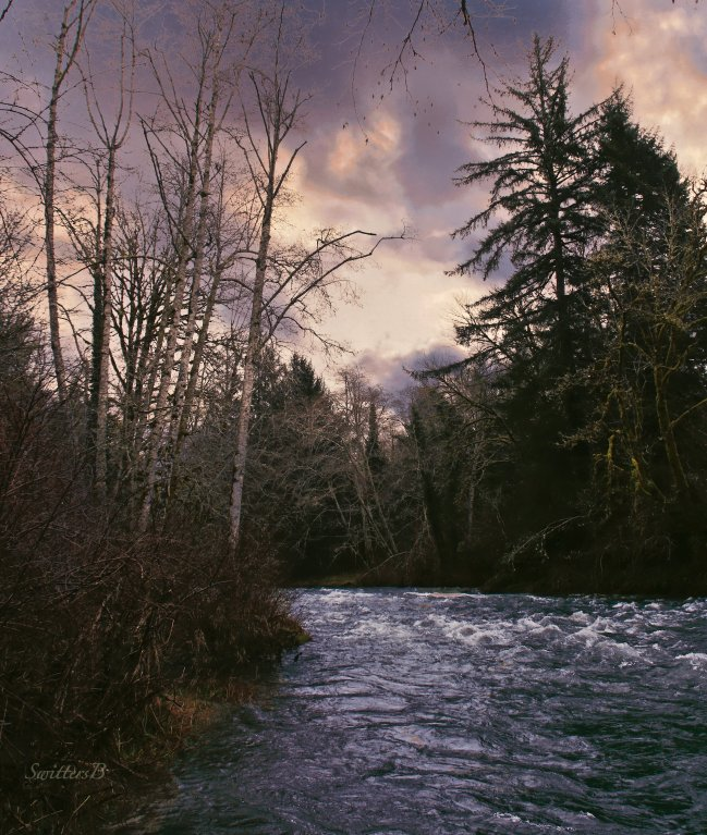 river-trees-sky-oregon-swittersb
