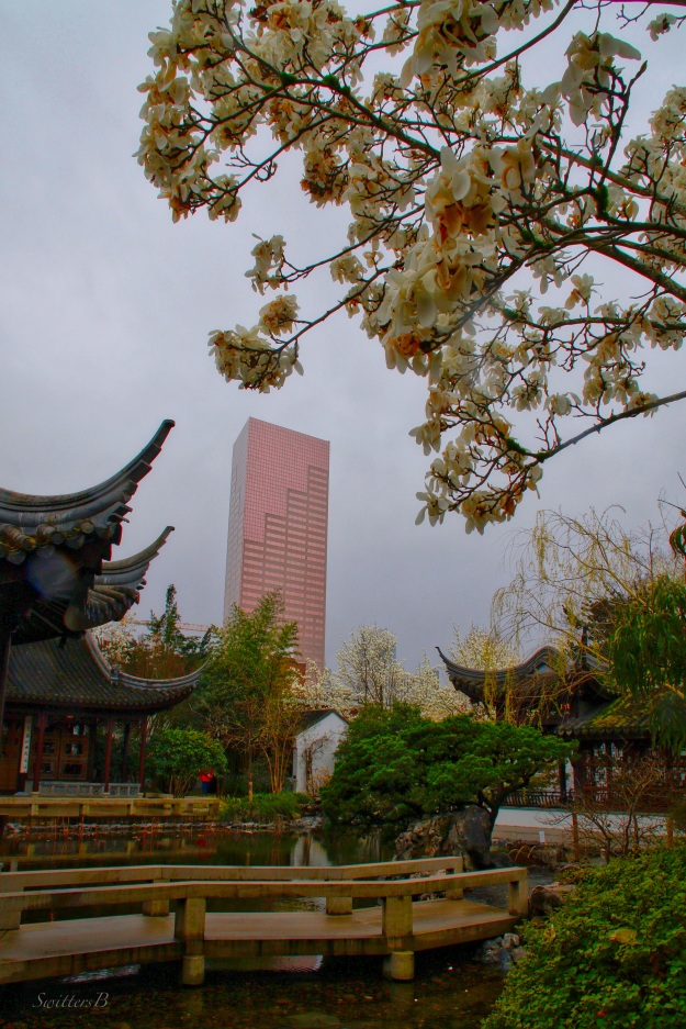 Chinese Garden-Portland-high rise-SwittersB