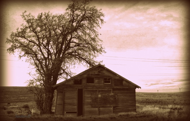 old ranch building-Rufus-Oregon-SwittersB.jpg