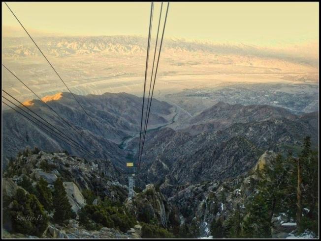Tram Above-St. Jacinto-Desert-SwittersB