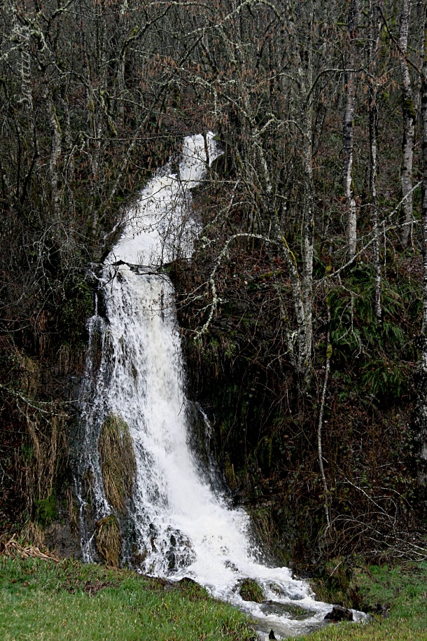 waterfall-Tualatin Mountains-SwittersB