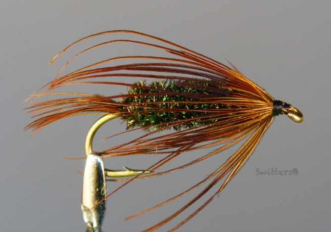Carey Special-Fly Pattern-SwittersB