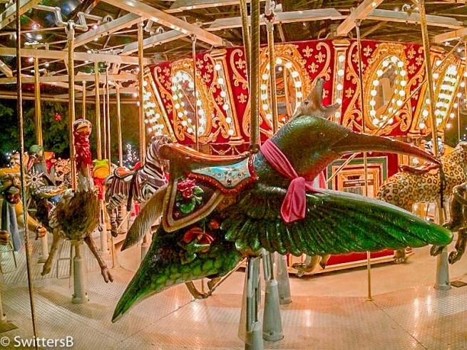 merry go round-hummingbird-SwittersB