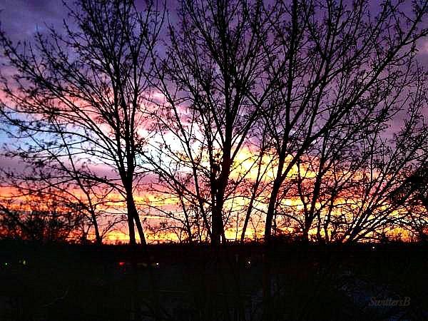 morning sky-Oregon- swittersb