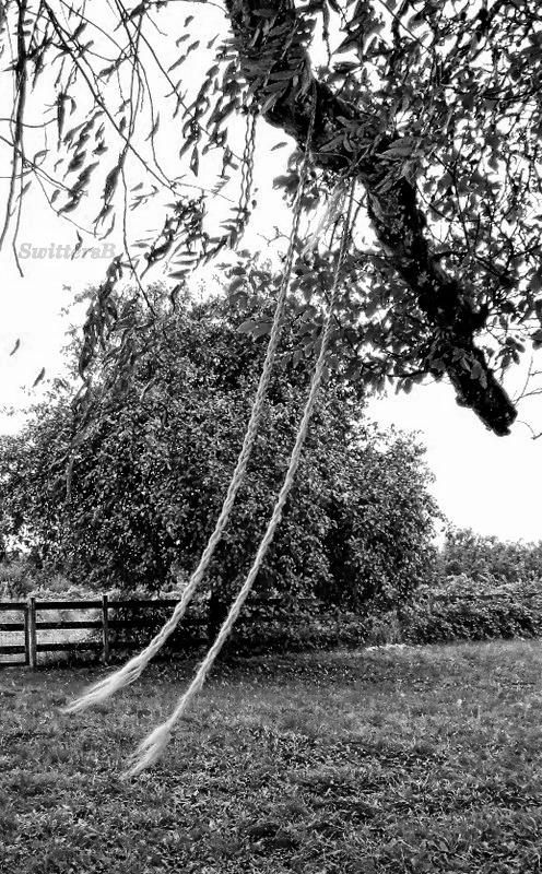 Old Swing-Farm-Wind-SwittersB