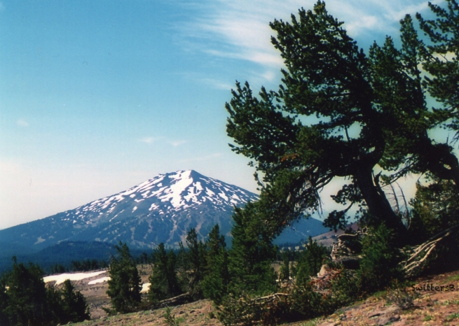 Black Butte-Oregon-1996-SwittersB