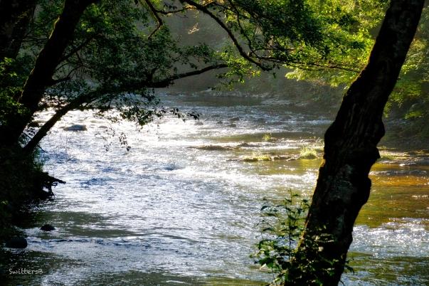 morning-light-river-SwittersB