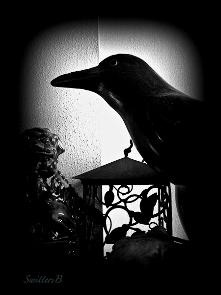 Blackbird-flight-SwittersB-2