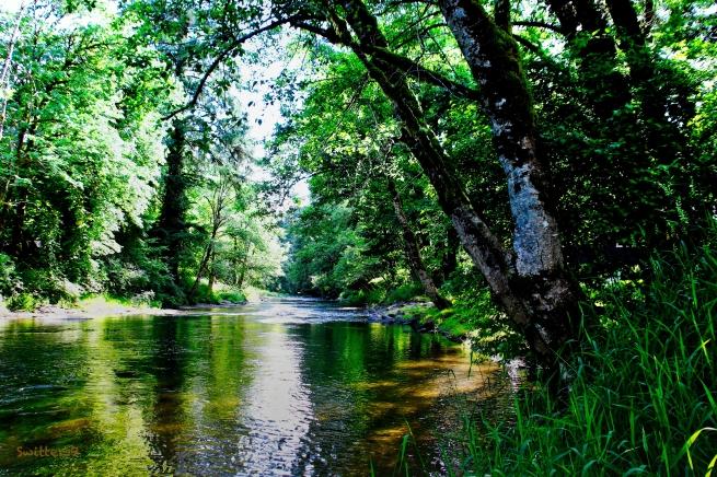 Oregon River-shade-SwittersB