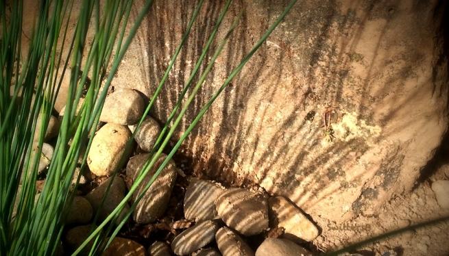 grass, lines, shadows, rock-SwittersB
