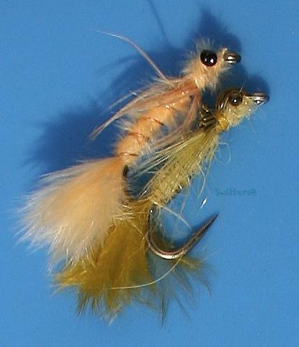 damsel fly love-spooning-SwittersB