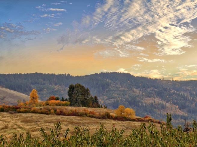 horizon-hood river-rural-SwittersB