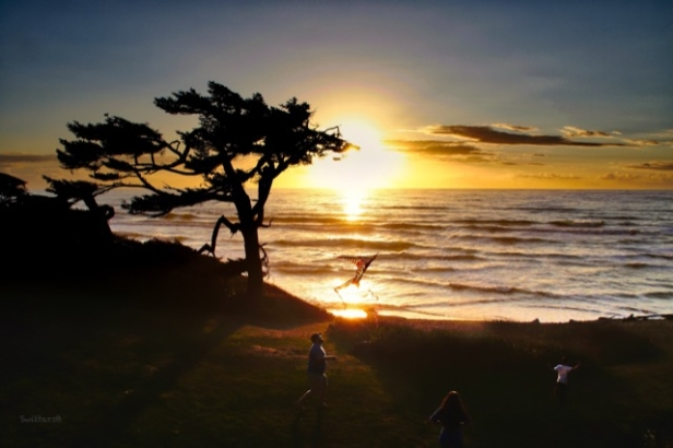 Sunset-flying kite-kids-SwittersB