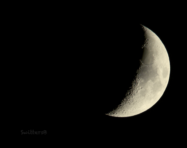 Quarter Moon-Pdx-Nov 24, 2017-SwittersB