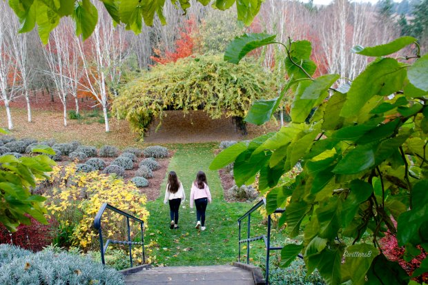 Twins-descending stairs-winery-SwittersB