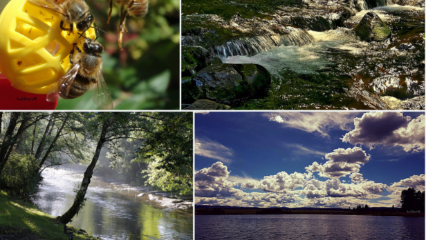 Outdoors Oregon-Exploring-SwittersB