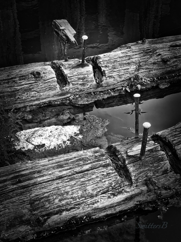 old dock-missing pieces-SwittersB