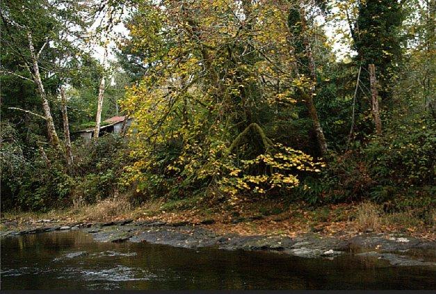 Stream-Oregon-Shed-SwittersB