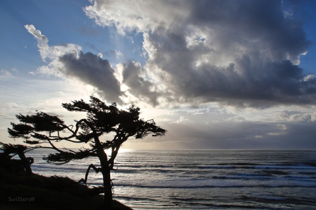 Oregon Coast-Arch Cape-SwittersB