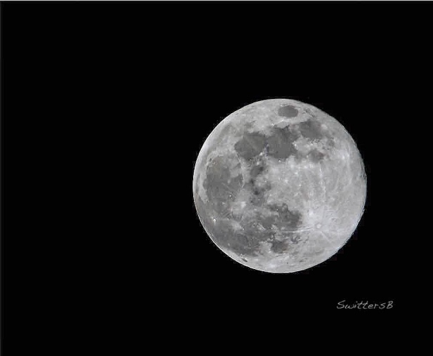 Full Moon-Portland-Mar 20 2019-SwittersB