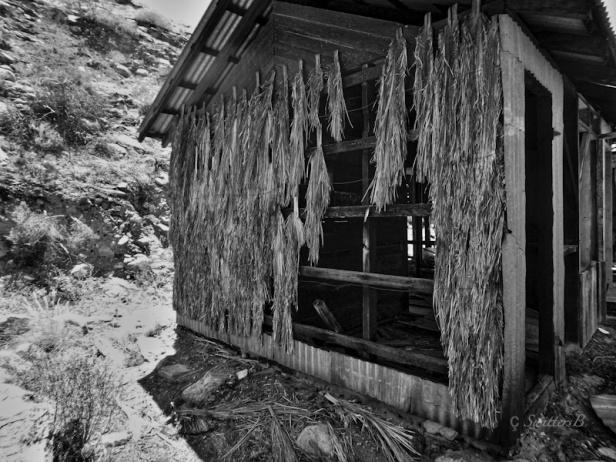 thatch siding-desert-california-swittersb ©