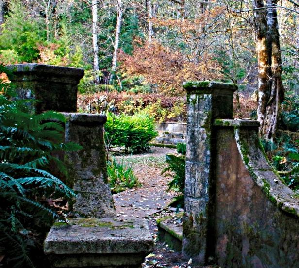 Secret Garden-Belknap-Oregon-SwittersB ©