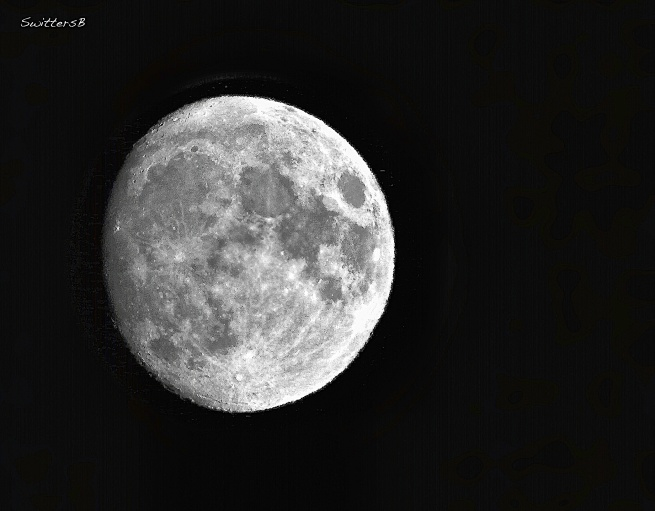 Waxing Moon-March 2020-SwittersB-