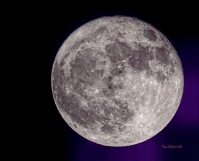Full Moon-Rufus Oregon-April 2020-SwittersB-!